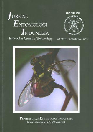 Entomologi.jpg