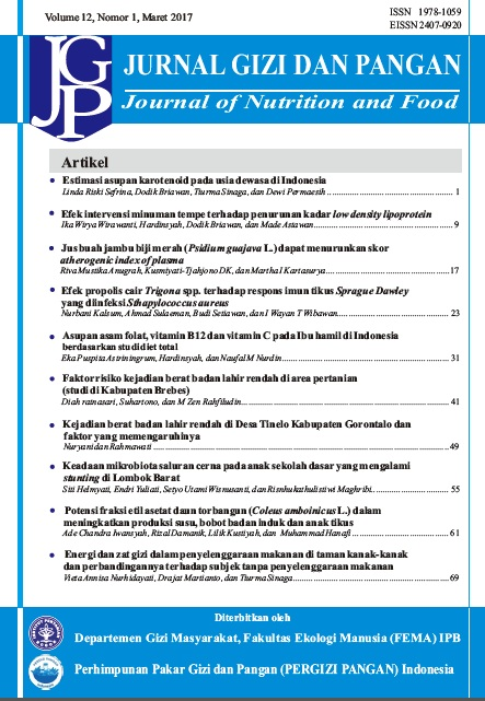 Asupan Asam Folat Vitamin B12 Dan Vitamin C Pada Ibu Hamil Di Indonesia Berdasarkan Studi Diet Total Jurnal Gizi Dan Pangan